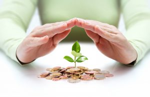 Hands covering new plant growth from stack of coins. Millenials changing financial landscape